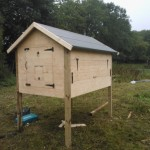Design and build Hen House WP 000603 1 150x150